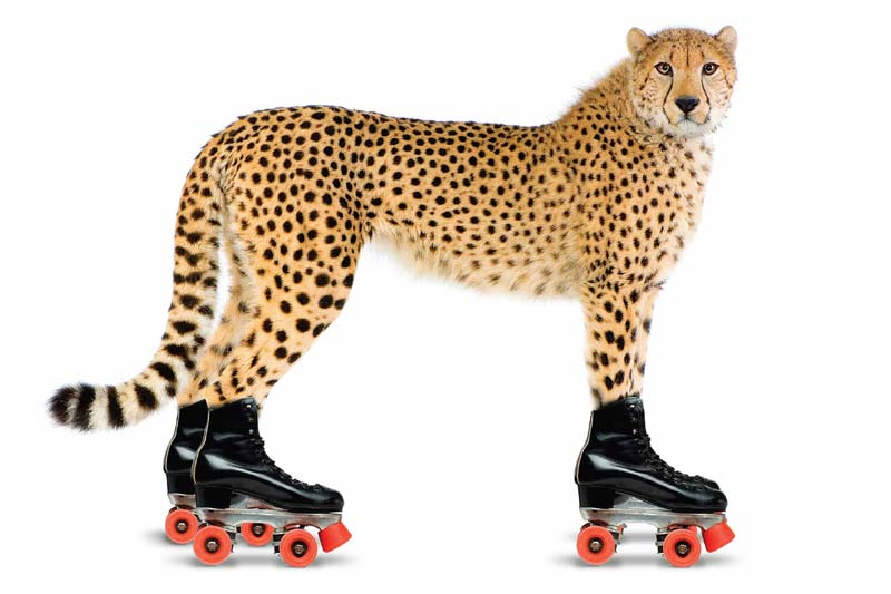 Creative Advertising - Speedy Leopard - Tony Man